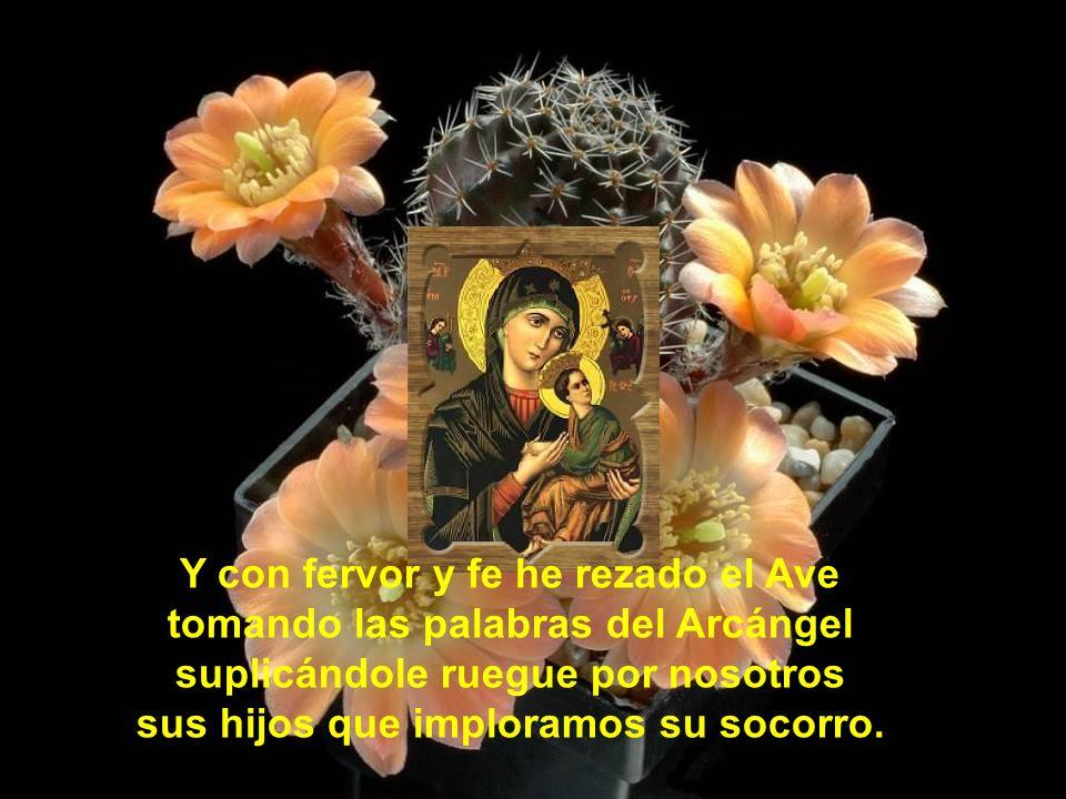 Yo he cortado temprano varias rosas y las he puesto en jarras cristalinas a los pies de la imagen de María en el altar que tengo tras la alcoba.