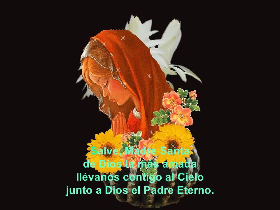 No nos olvides Madre somos hijos del Dios tres veces Santo bienamados y de ti protegidos y mimados y por Jesús el Cristo redimidos.