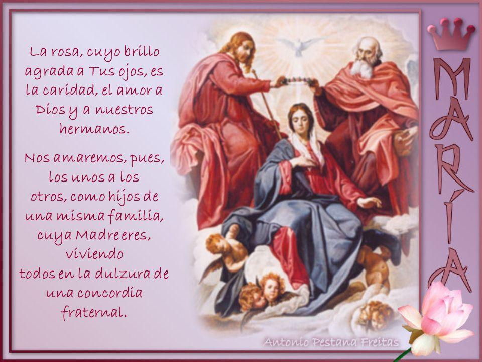 Nos esforzaremos, pues, durante el curso de este mes, consagrado a Tu gloria, ¡Oh Virgen Santa!, en conservar nuestras almas puras y sin manchas, y en