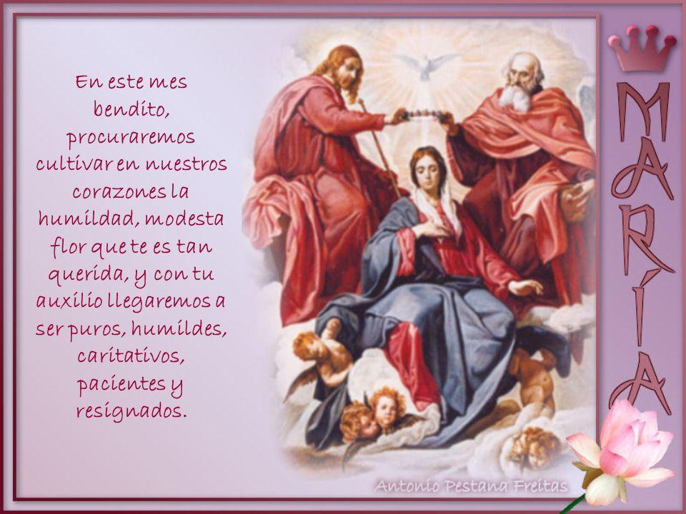 La rosa, cuyo brillo agrada a Tus ojos, es la caridad, el amor a Dios y a nuestros hermanos. Nos amaremos, pues, los unos a los otros, como hijos de u