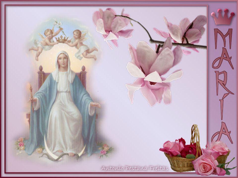 ¡Oh María!, haz producir en el fondo de nuestros corazones todas estas amables virtudes; que ellas broten, florezcan y den al fin frutos de gracia, pa