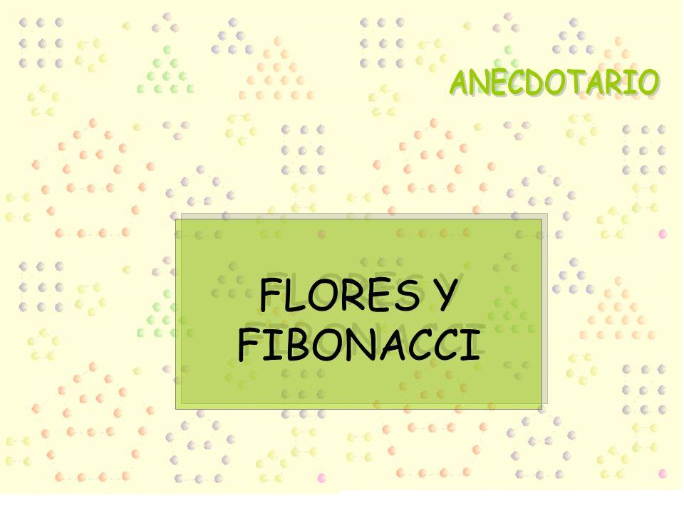 FLORES Y FIBONACCI