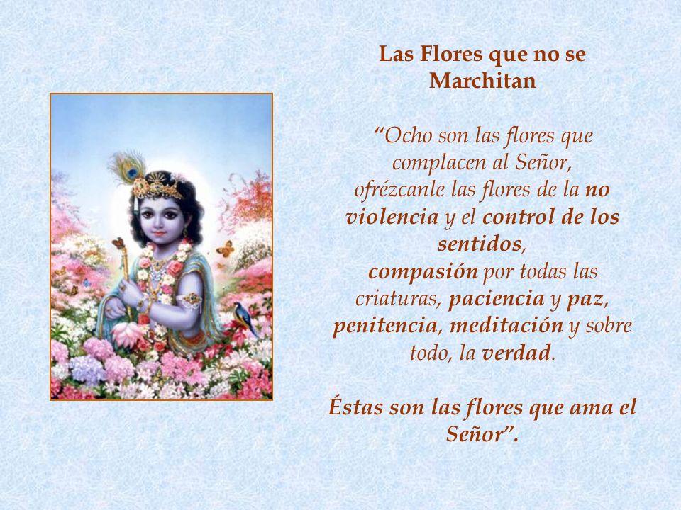 Las Flores que no se Marchitan Ocho son las flores que complacen al Señor, ofrézcanle las flores de la no violencia y el control de los sentidos, compasión por todas las criaturas, paciencia y paz, penitencia, meditación y sobre todo, la verdad.