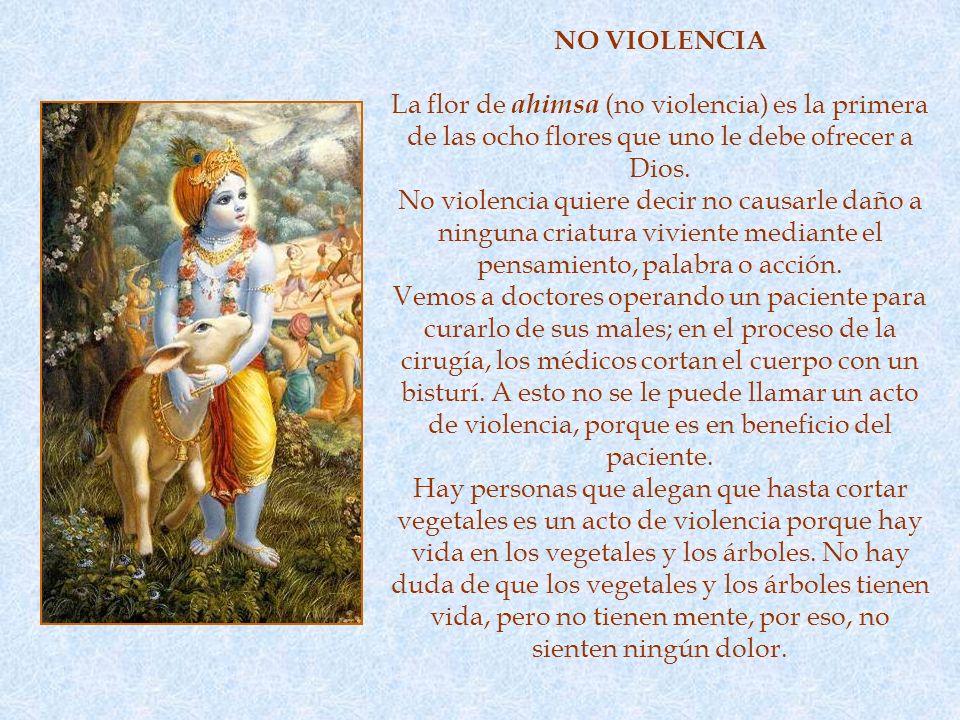 NO VIOLENCIA La flor de ahimsa (no violencia) es la primera de las ocho flores que uno le debe ofrecer a Dios.