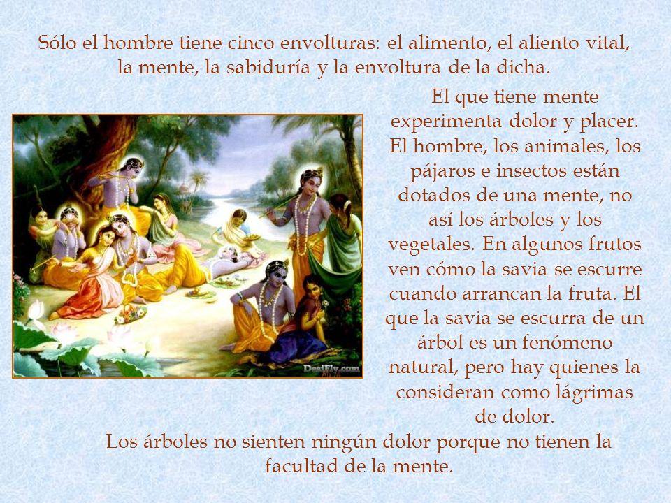 NO VIOLENCIA La flor de ahimsa (no violencia) es la primera de las ocho flores que uno le debe ofrecer a Dios. No violencia quiere decir no causarle d