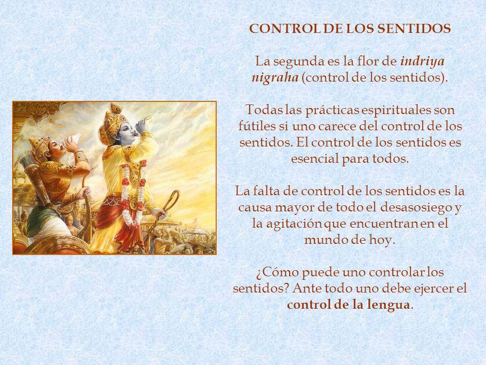 CONTROL DE LOS SENTIDOS La segunda es la flor de indriya nigraha (control de los sentidos).
