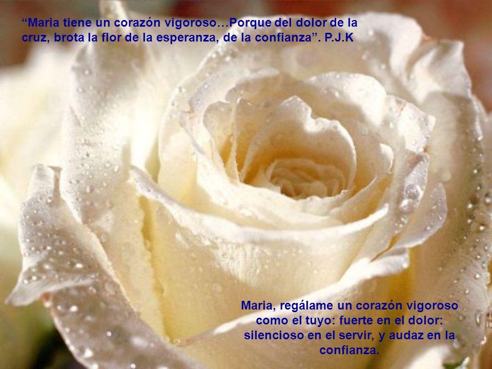 Debemos aspirar a ser un reflejo de Maria en la vida diaria. P.J.K. Tan solo me pregunto: Que harías tu Maria en mi lugar
