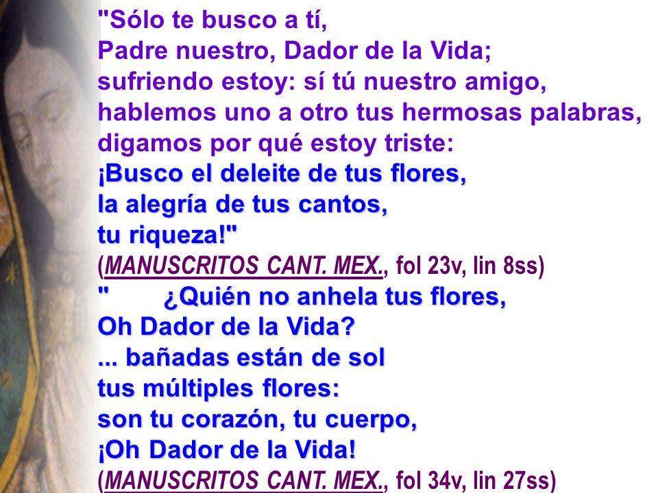 Sólo te busco a tí, Padre nuestro, Dador de la Vida; sufriendo estoy: sí tú nuestro amigo, hablemos uno a otro tus hermosas palabras, digamos por qué estoy triste: ¡Busco el deleite de tus flores, la alegría de tus cantos, tu riqueza! ( MANUSCRITOS CANT.