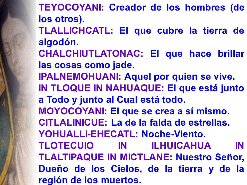 SURGE UNA EFERVESCENCIA GUADALUPANA Para el español la devoción a la Señora de Guadalupe no tuvo mucha importancia.