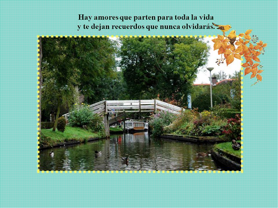 Hay amores que duran poco tiempo en la vida y hay jardines que duran toda una eternidad.