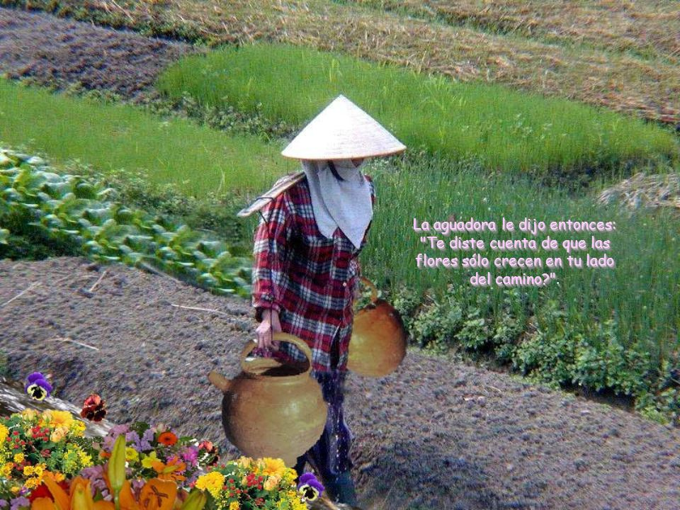La aguadora le dijo entonces: Te diste cuenta de que las flores sólo crecen en tu lado del camino? .