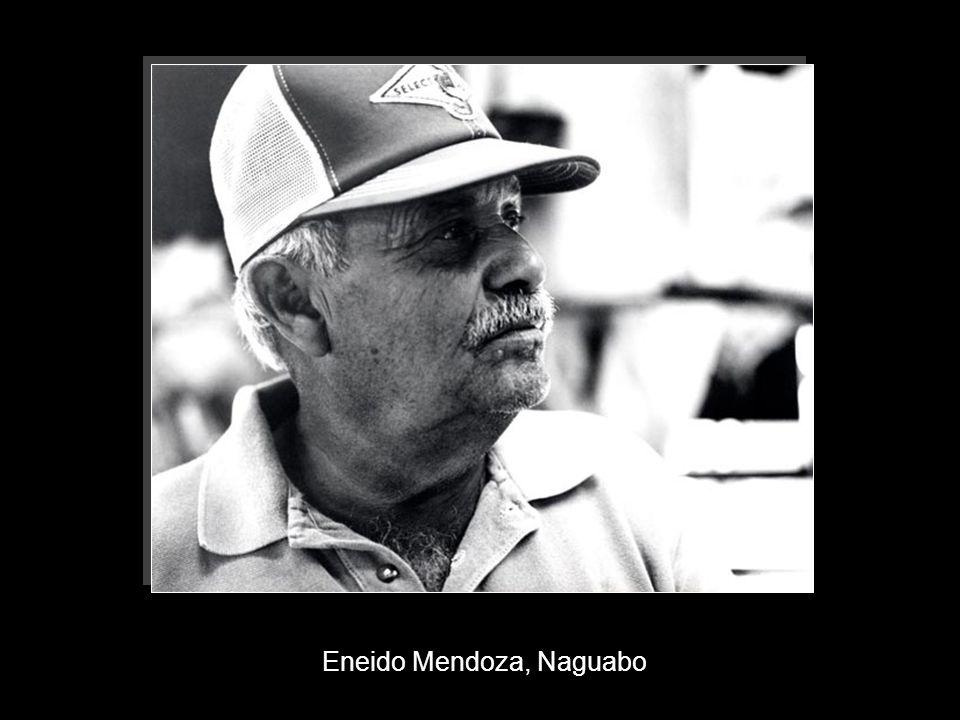 Eneido Mendoza, Naguabo