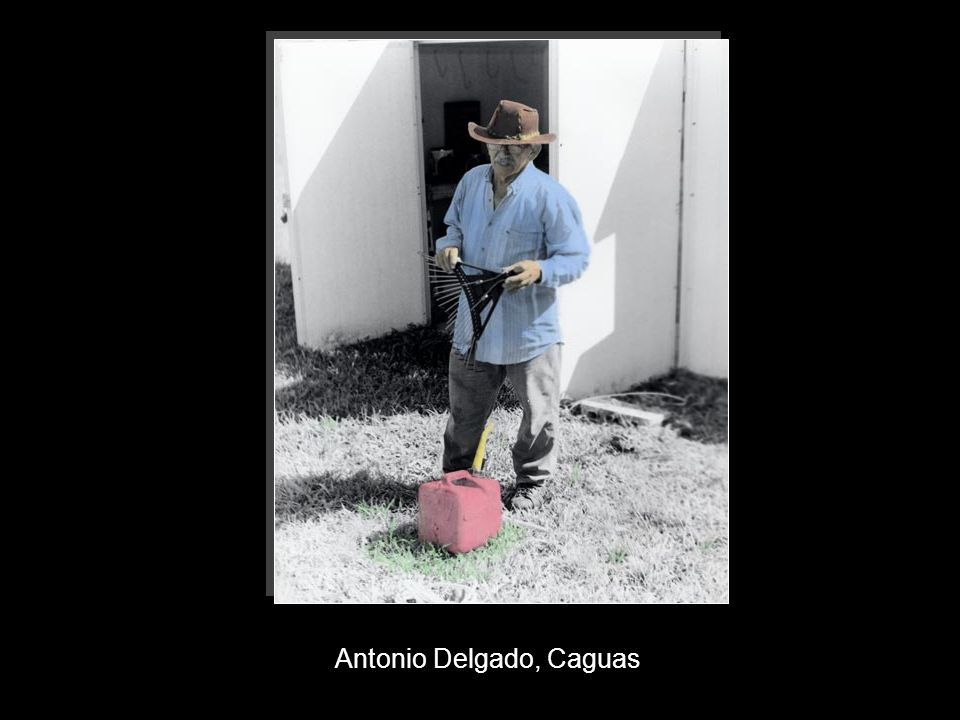 Antonio Delgado, Caguas