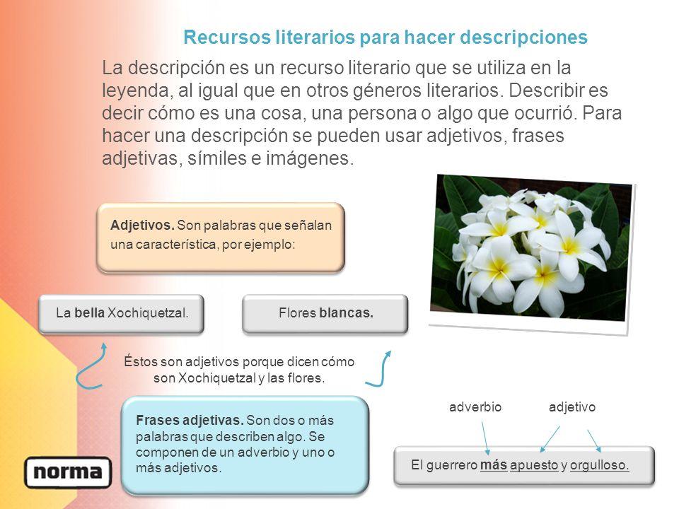 La descripción es un recurso literario que se utiliza en la leyenda, al igual que en otros géneros literarios. Describir es decir cómo es una cosa, un