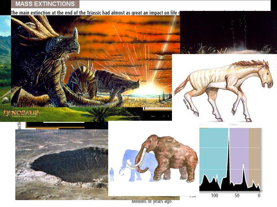 Final del Ordovícico Devónico tardío Final del Pérmico Final del Triásico Final del Cretácico