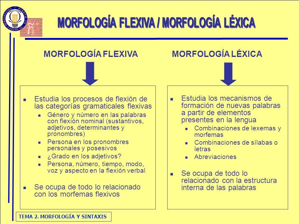 TEMA 2. MORFOLOGÍA Y SINTAXIS Estudia los procesos de flexión de las categorías gramaticales flexivas Género y número en las palabras con flexión nomi