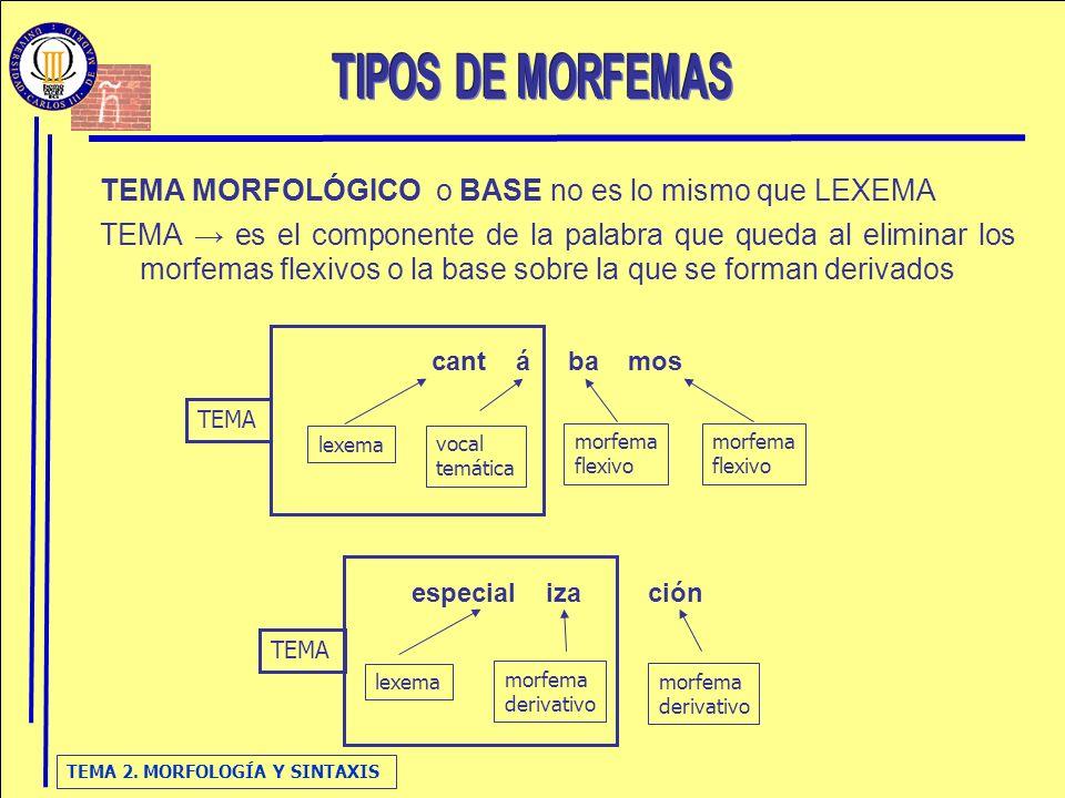 TEMA 2. MORFOLOGÍA Y SINTAXIS TEMA MORFOLÓGICO o BASE no es lo mismo que LEXEMA TEMA es el componente de la palabra que queda al eliminar los morfemas