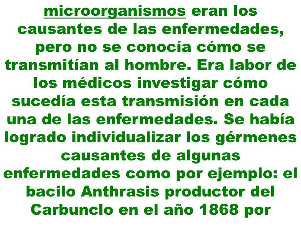 microorganismos eran los causantes de las enfermedades, pero no se conocía cómo se transmitían al hombre. Era labor de los médicos investigar cómo suc
