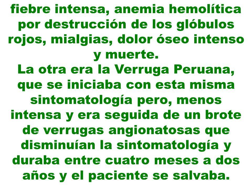 El reto consistió en demostrar que estas dos formas de presentación correspondían a una sola enfermedad y no que eran dos enfermedades con factor etiológico diferentes, como lo afirmaban algunos distinguidos profesores de medicina en el Perú y en el extranjero, sobre todo el profesor Izquierdo en Santiago de Chile.