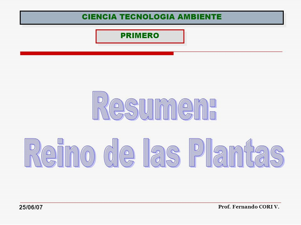 Prof. Fernando CORI V. CIENCIA TECNOLOGIA AMBIENTE PRIMERO 25/06/07