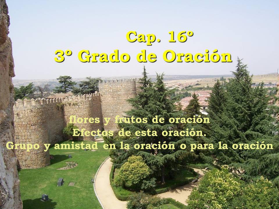Cap. 16º 3º Grado de Oración Cap. 16º 3º Grado de Oración flores y frutos de oración Efectos de esta oración. Grupo y amistad en la oración o para la