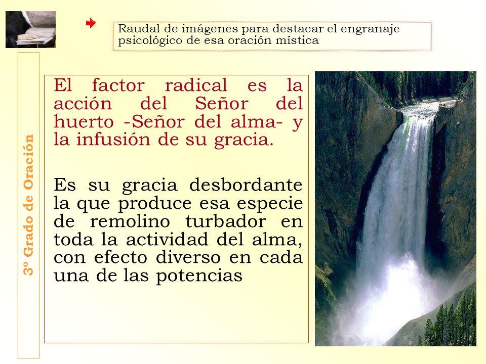 El factor radical es la acción del Señor del huerto -Señor del alma- y la infusión de su gracia. Es su gracia desbordante la que produce esa especie d