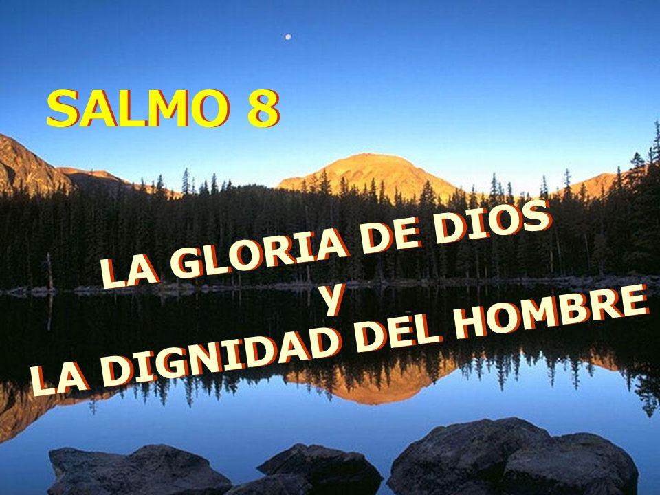 LA GLORIA DE DIOS y LA DIGNIDAD DEL HOMBRE LA GLORIA DE DIOS y LA DIGNIDAD DEL HOMBRE SALMO 8