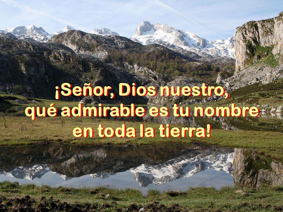 ¡Señor, Dios nuestro, qué admirable es tu nombre en toda la tierra.