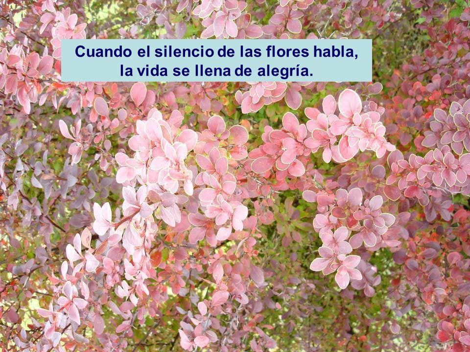 Cuando el silencio de las flores habla, la vida se llena de alegría.