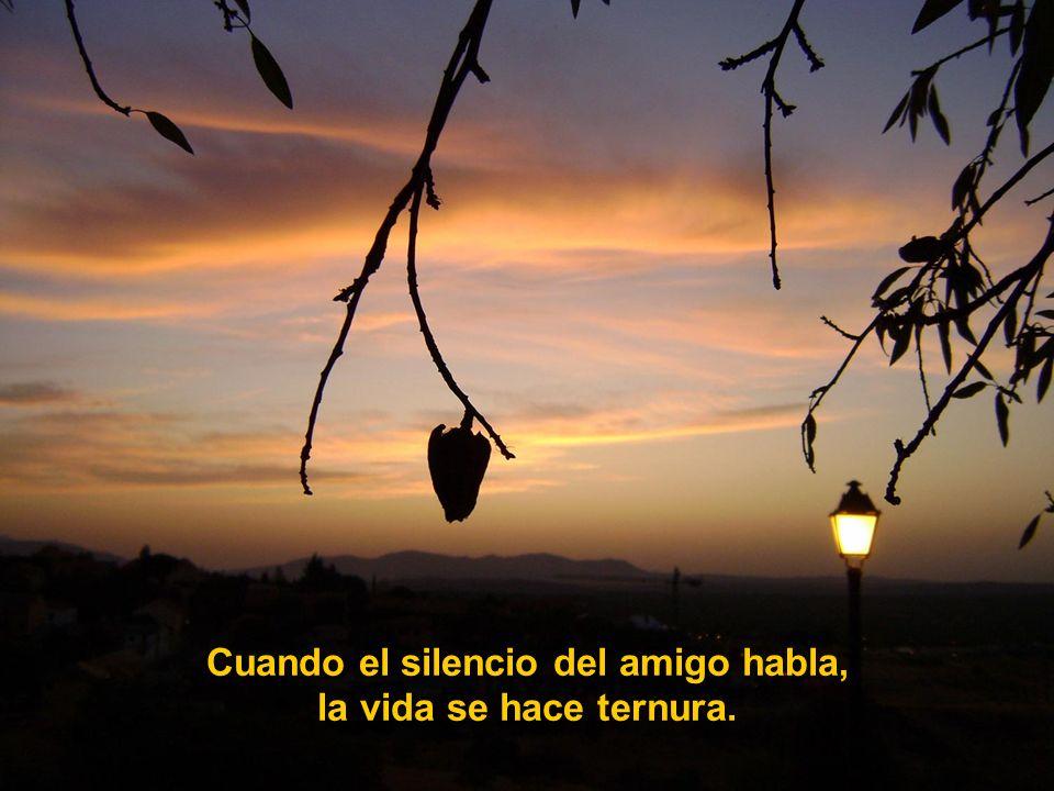 Cuando el silencio del amigo habla, la vida se hace ternura.