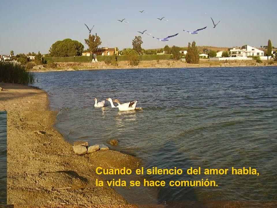 Cuando el silencio del amor habla, la vida se hace comunión.