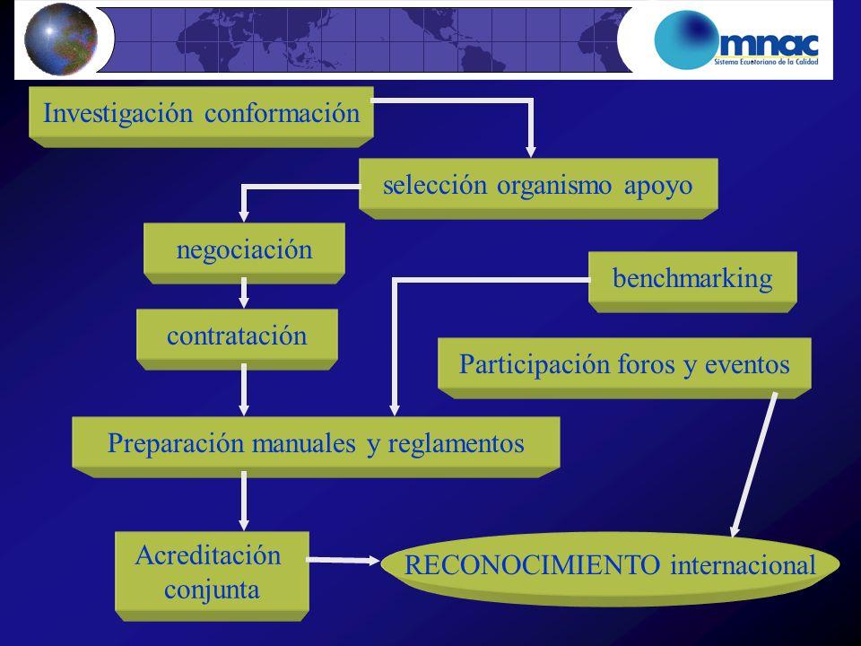 Investigación conformación selección organismo apoyo negociación benchmarking Participación foros y eventos contratación Preparación manuales y reglam
