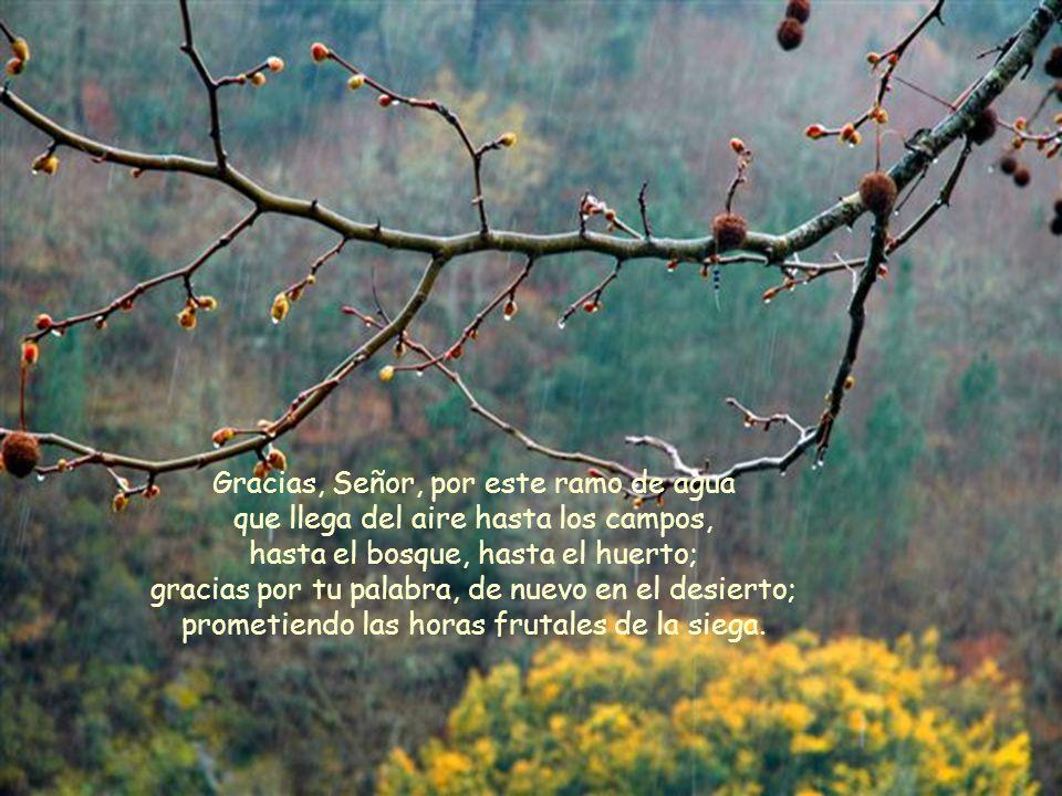 Texto: José García Nieto. Presentación: M. Asun Gutiérrez. Música: Vivaldi. Primavera.