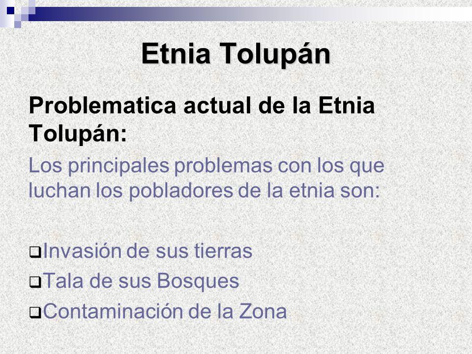 Problematica actual de la Etnia Tolupán: Los principales problemas con los que luchan los pobladores de la etnia son: Invasión de sus tierras Tala de
