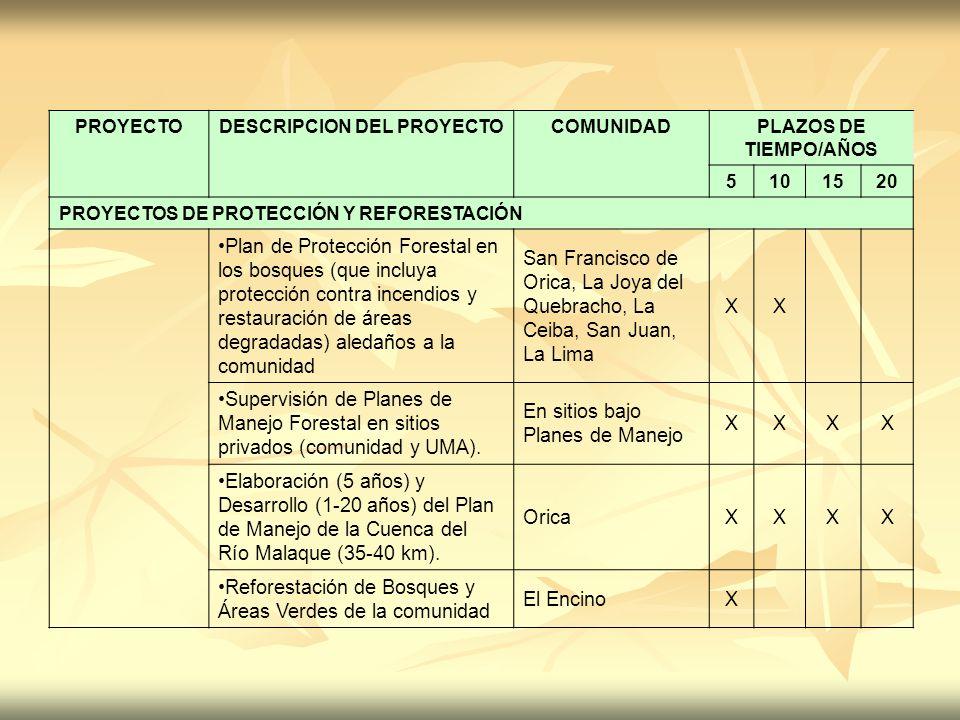 PROYECTODESCRIPCION DEL PROYECTOCOMUNIDADPLAZOS DE TIEMPO/AÑOS 5101520 PROYECTOS DE PROTECCIÓN Y REFORESTACIÓN Plan de Protección Forestal en los bosq