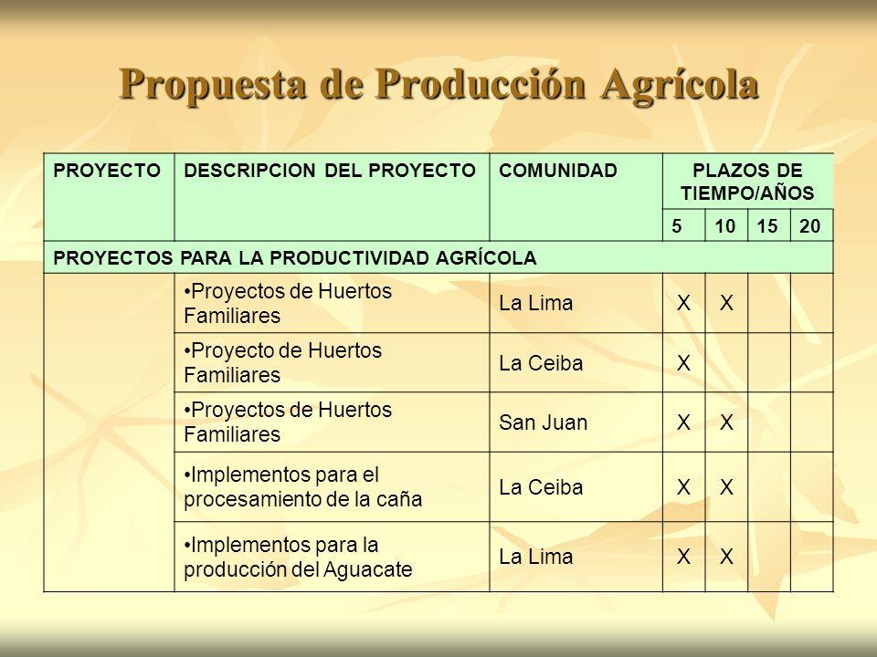 Propuesta de Producción Agrícola PROYECTODESCRIPCION DEL PROYECTOCOMUNIDADPLAZOS DE TIEMPO/AÑOS 5101520 PROYECTOS PARA LA PRODUCTIVIDAD AGRÍCOLA Proye