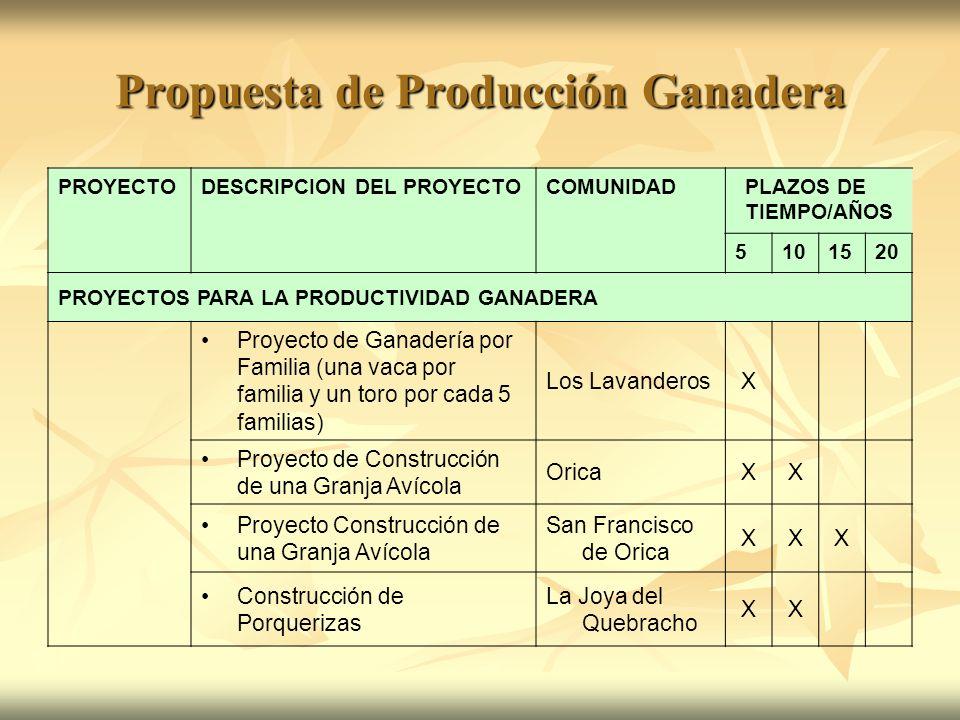Propuesta de Producción Ganadera PROYECTODESCRIPCION DEL PROYECTOCOMUNIDADPLAZOS DE TIEMPO/AÑOS 5101520 PROYECTOS PARA LA PRODUCTIVIDAD GANADERA Proye