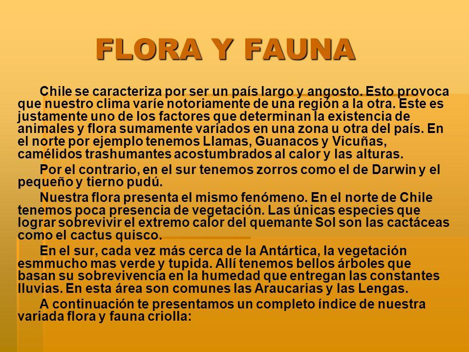 COLIHUE COLIHUE Nombre científico Chusquea culeu Familia Gramínea Distribución Habita desde Talca hasta Aysén..