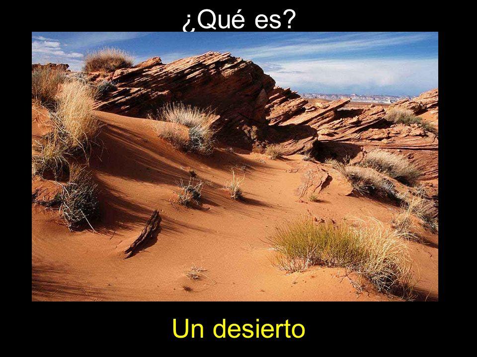 ¿Qué es? Un desierto