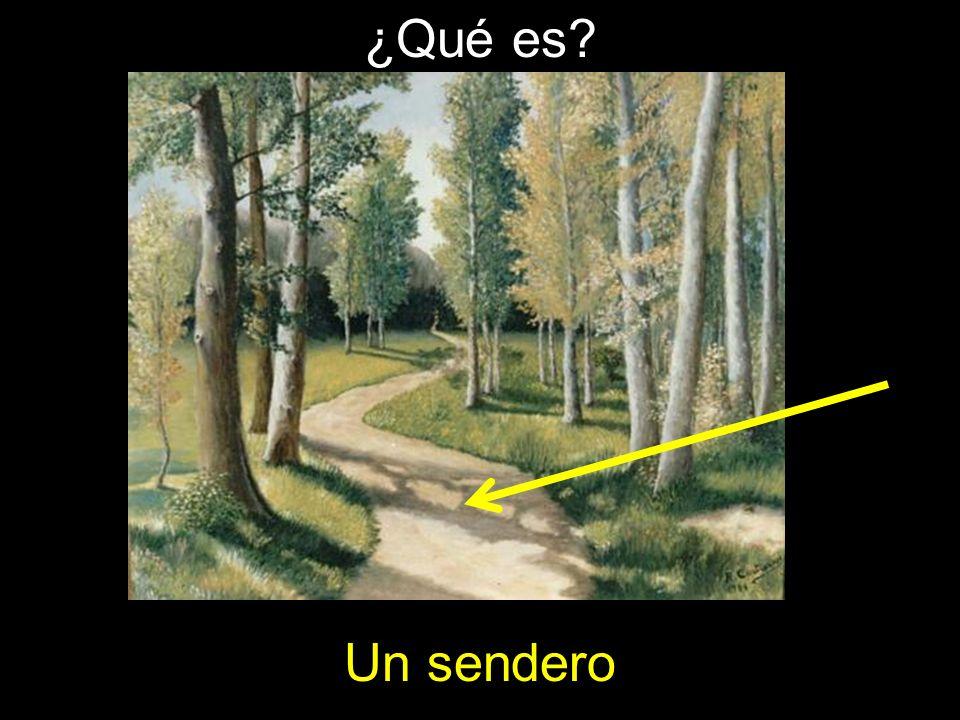 Un sendero