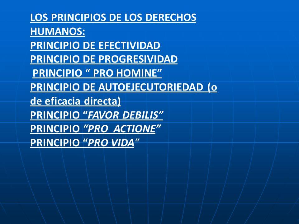 LOS PRINCIPIOS DE LOS DERECHOS HUMANOS: PRINCIPIO DE EFECTIVIDAD PRINCIPIO DE PROGRESIVIDAD PRINCIPIO PRO HOMINE PRINCIPIO DE AUTOEJECUTORIEDAD (o de