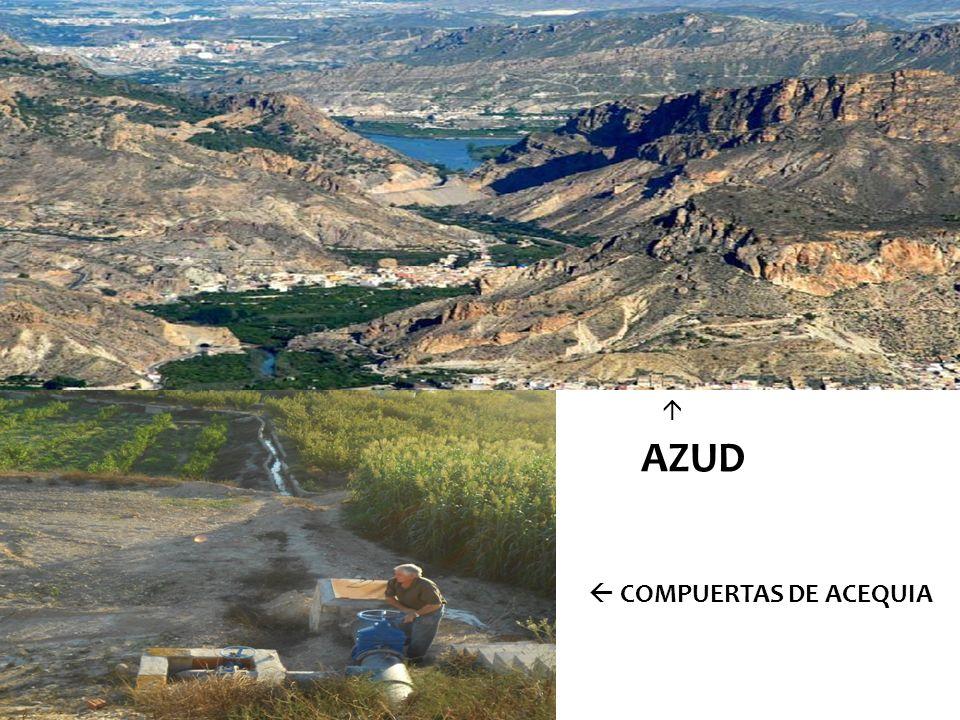 AZUD COMPUERTAS DE ACEQUIA