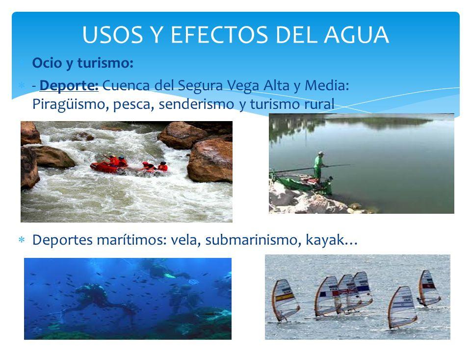 USOS Y EFECTOS DEL AGUA Ocio y turismo: - Deporte: Cuenca del Segura Vega Alta y Media: Piragüismo, pesca, senderismo y turismo rural Deportes marítim