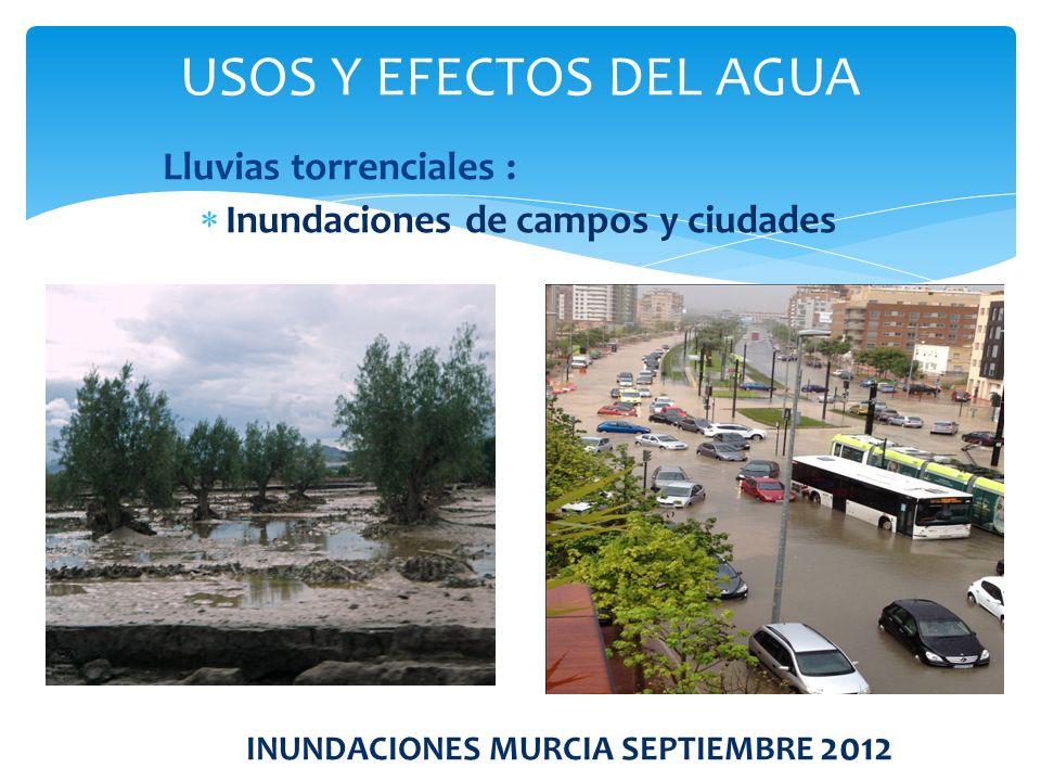Lluvias torrenciales : Inundaciones de campos y ciudades INUNDACIONES MURCIA SEPTIEMBRE 2012 USOS Y EFECTOS DEL AGUA