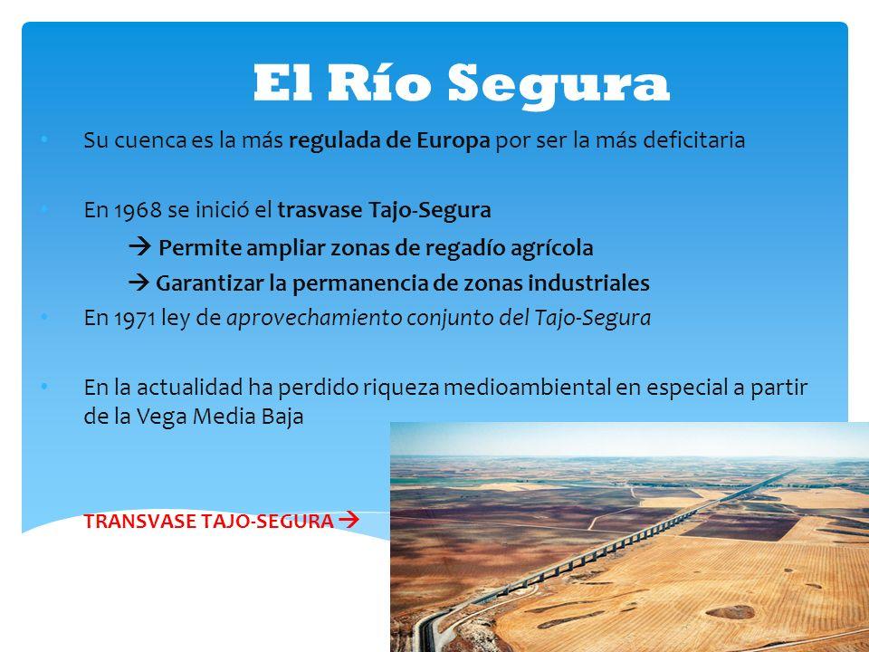 El Río Segura Su cuenca es la más regulada de Europa por ser la más deficitaria En 1968 se inició el trasvase Tajo-Segura Permite ampliar zonas de reg