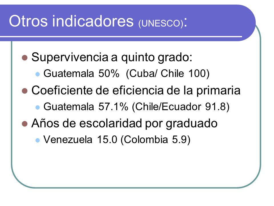 Algunos indicadores de rendimiento: En promedio, en cuarto año de primaria de siete países de América Latina (1994): El rendimiento en lenguaje por estrato de ingreso fue de 71.9 para el alto, 58.4 para el medio y 47.9 para el bajo En matemáticas, los rendimientos respectivos fueron 59.0, 49.8 y 43.4 Se advierten mayores rendimientos en la educación privada que en la pública (OREALC, 1994)
