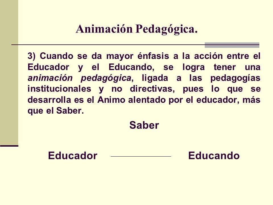 Animación Pedagógica.
