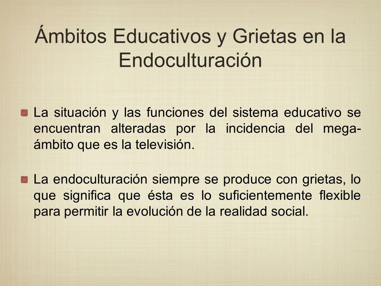 La situación y las funciones del sistema educativo se encuentran alteradas por la incidencia del mega- ámbito que es la televisión. La endoculturación