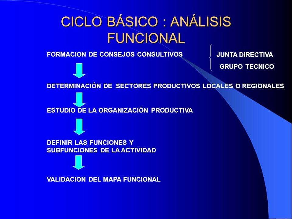 CICLO BÁSICO : ANÁLISIS FUNCIONAL FORMACION DE CONSEJOS CONSULTIVOS JUNTA DIRECTIVA GRUPO TECNICO DETERMINACIÓN DE SECTORES PRODUCTIVOS LOCALES O REGI