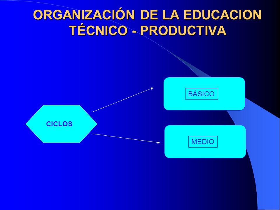 ORGANIZACIÓN DE LA EDUCACION TÉCNICO - PRODUCTIVA BÁSICOMEDIO CICLOS